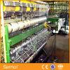 Горячая окунутая гальванизированная фикчированная машина загородки ячеистой сети поголовья узла