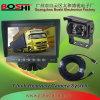 セリウム、FCC、RoHSは承認した7インチ車のカメラのモニターシステム(SF-7005RV)を