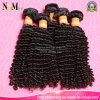 Unprocessed all'ingrosso 8A Grade Virgin Curly brasiliano Hair, acconciature di Classic Jerry Curl per le donne di colore