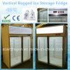 Réfrigérateur vertical d'entreposage dans la glace avec la double porte en verre