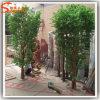Pianta artificiale della vetroresina dell'interno sempreverde della decorazione