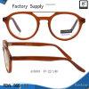Ouderwetse Ronde Vorm Eyewear met Hoogste Staaf (A15533)