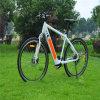 Bicicleta de montanha elétrica nova Ebike de 28 polegadas com a bateria escondida da câmara de ar