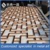Customzied Decorativos de acero inoxidable pantalla de corte láser para interiores y exteriores