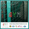 Гальванизировано и PVC Coated Fence Wholesale