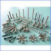 Todos los diversos tornillos Drilling penetrantes de Typesgalvanized /Self
