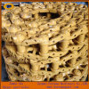 Corrente lubrific estrutura da trilha da máquina escavadora e da escavadora de Caterpillar