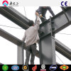Estructura de acero vertida (SSW-172)