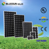 China Largest Supplier 12V 100W Solar Panel Price