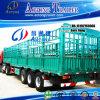 最もよいSell Storage Cattle Transport StakeかCargo Semi Truck Trailer (LAT9405CLXY)