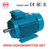 삼상 AC NEMA 모터 (286T-4-30HP)를 수용하는 무쇠