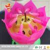 [هبّي بيرثدي] أغنيات الصين لون موسيقى شمعة عيد ميلاد شمعة