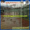 二重円の鋼線の網の塀(直接工場)
