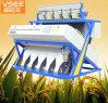 Heißes Verkaufs-neues Modell-mit hohem Ausschuss 5 Rutschcer Diplommandel Nuts CCD-Farben-Sorter-Maschine