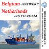 Agente de transporte Antuérpia do frete de mar (Bélgica), Rotterdam (Países Baixos) -20  /40