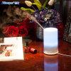 Farben-voller Tisch-Lampen-Befeuchter für Dekoration