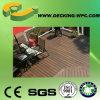 Piso al aire libre Ej D-8 del Decking del sólido WPC