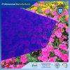 Het Blad van PMMA/van het Plexiglas/Kleurrijk Gegoten AcrylBlad
