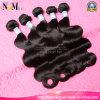 未加工自然な毛の拡張インドのバージンの毛のWeavonのぬれた、波状の毛