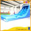 Water gonfiabile Slide con il Doppio-Channel parco di divertimenti (AQ1066)