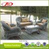屋外の家具の余暇の椅子(DH-195)