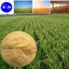 Fertilizante orgánico del polvo del aminoácido para las cosechas sensibles del cloruro