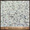 La Cina Seasame White Granite G655 per Flooring/Wall Cladding/Countertop