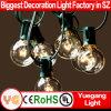공장 가격 UL 옥외 실내 훈장을%s 승인되는 G40 LED 끈 빛