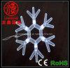 LED 장식적인 가벼운 /Christmas 펀던트 빛 (LS-GJ-022)