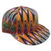 Gorra de béisbol floral Sb1579 del Snapback de la tela
