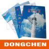 A4 Coated Paper Colorful Printing para Advertizing (DC-BRO003)