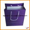 Sacco di carta del regalo riciclabile (XH-271)