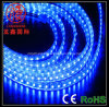 SMD5050/3528 Outdoor Blue Waterproof LED Strip Light