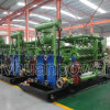 unità che sprigiona gas naturali 600kw