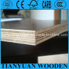 18mm Marien /Formwork /Waterproof Triplex