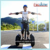 Motorino elettrico adulto 2014 dell'equilibrio elettrico del triciclo