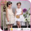 Vestido especial do baile de finalistas da menina do projeto, roupa formal do partido das crianças