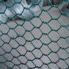 熱い販売のプラスチック上塗を施してある六角形の金網の網