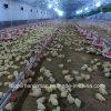 &Equipment van de Machines van het Landbouwbedrijf van het gevogelte voor de Productie van de Grill