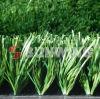 Sunwingは芝生の総合的な草のサッカーの小型ゴルフ人工的な草を遊ばす