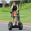 Best Scooter Scooter électrique V5 + Scooter électrique de plage