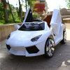 Vente en gros approuvée de véhicule électrique de gosses de la CE mini