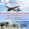 Goedkope luchtvracht van China aan Colombia, Chili, Peru, Brazilië