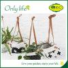 Plantador Eco-Friendly da tela da venda direta da fábrica de Onlylife com projeto diferente