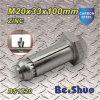 Sujetador M20X33X100mm de los tornillos de ancla de la alta calidad