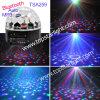 De Disco Crystal Ball van Auto MP3 6*1W Rgbwyv LED van Bluetooth