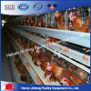 un tipo gabbie del pollo di Jinfeng per le aziende avicole