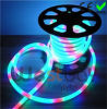 240V RGB Flexible LED Neon