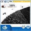 ココナッツ1トンあたりシェルによって作動するカーボン価格/粒状の石炭実行中カーボン価格