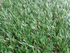 Дешевая искусственная трава для ландшафта